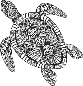 home_turtle